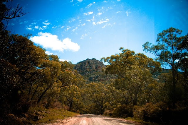 Roses Gap Road with Grampians in distance